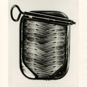 Alfred GESCHEIDT - Can O'Nudes - Tirage argentique original 1972 - 22 x 28cm