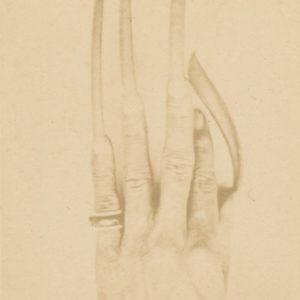 ONGLES Mandarin Annamite - Indochine DAI VIÊT - Tirage Albuminé CDV Burgaud 1880